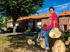 Deventerse is schimmelhuis door 'rotboom' zat