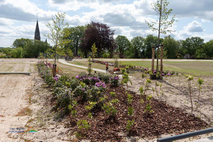 Al voor de bouw van nieuwe woningen, heeft de gemeente bloemperkjes aangelegd.