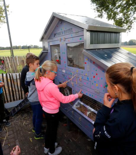 Konijnen Buurtboerderij Eersel krijgen eigen hotel
