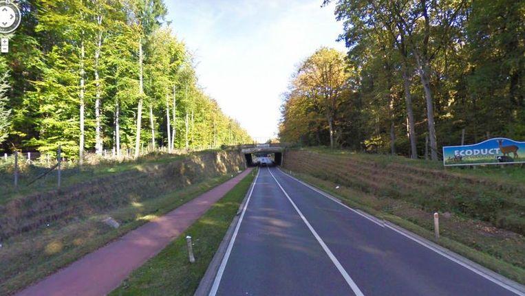 Het ecoduct over de N25 in Bierbeek.