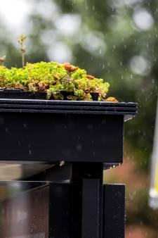 Zwolle wil nog geen bushaltes met plantjes op het dak