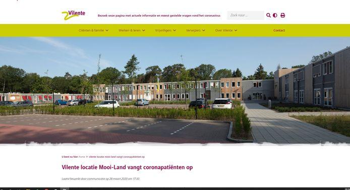 Screenshot van de website van Vilente.