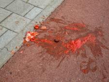 Roosendaals meisje gewond nadat ze schrikt van wesp, botst tegen fietser en vervolgens op pot pastasaus valt