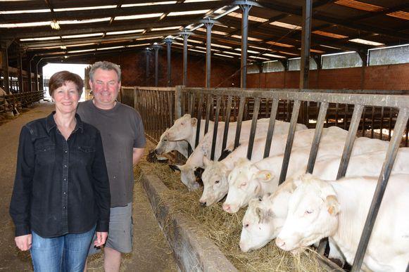 Geert Meersschaert en Kris Van Royen stelden eveneens de stallen open voor het publiek.