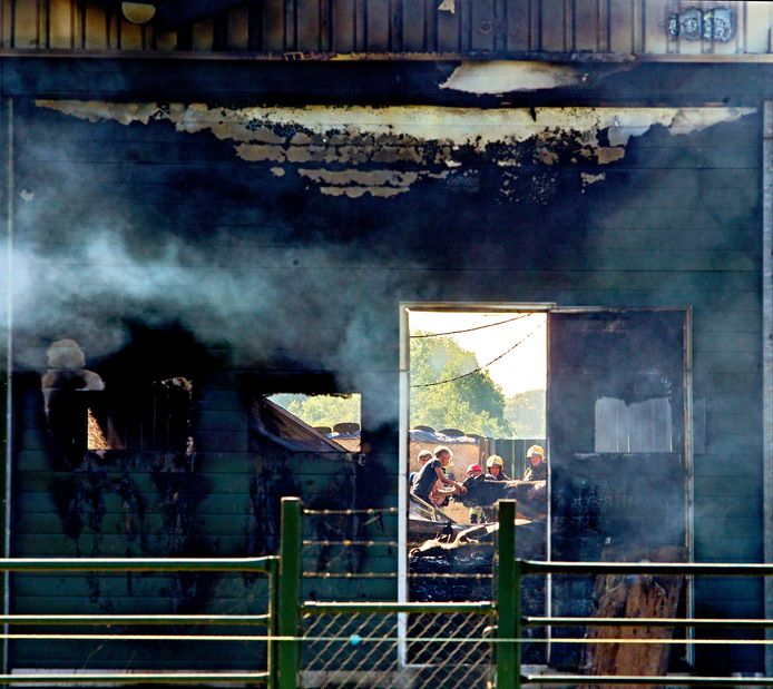 VVD, CDA, D66 en ChristenUnie moeten direct maatregelen nemen tegen stalbranden, vindt Wakker Dier.