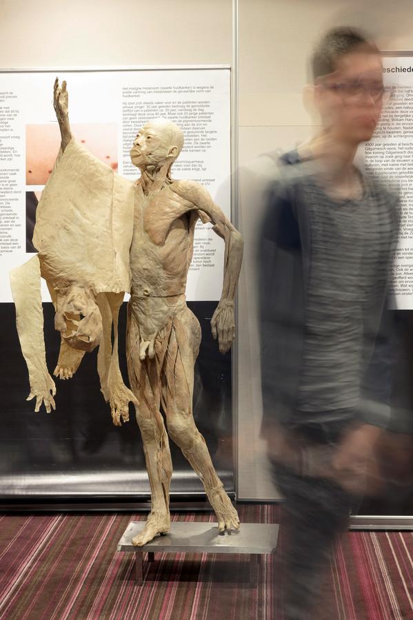 Real Human Bodies in Het Fletcherhotel in Rosmalen