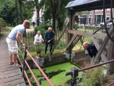 Regenval oorzaak zuurstoftekort bij honderden vissen in Utrecht