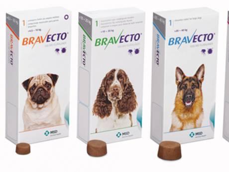 Is antivlooienmiddel Bravecto wel veilig? Grote onrust onder hondenliefhebbers, onderzoek gestart