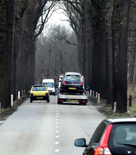 Zo'n 400 bomen in Zundert sneuvelen vanwege werk aan N638
