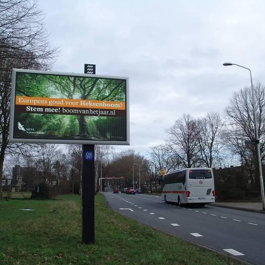 De informatiepanelen in Eindhoven verwijzen naar de Europese Boom van het Jaar-wedstrijd waar de Heksenboom aan meedoet.