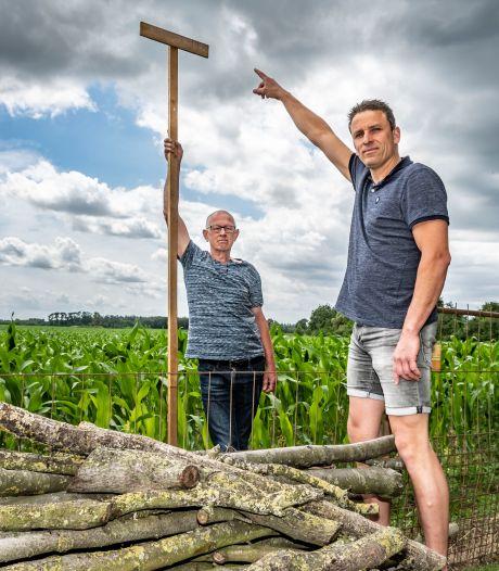 Hilvarenbeek vergunt 50 hectare aan zonneparken