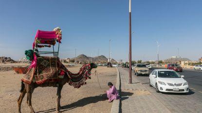 Bus met Britse toeristen knalt op tankwagen in Saoedi-Arabië: 4 doden