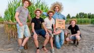 Simpel verjaardagsfeestje groeit uit tot 'maïsfestival' met 10.000 bezoekers: Campo Solar helemaal klaar voor derde editie