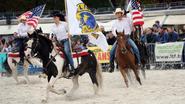 1.500 bezoekers zien paarden pronken aan Zilvermeer
