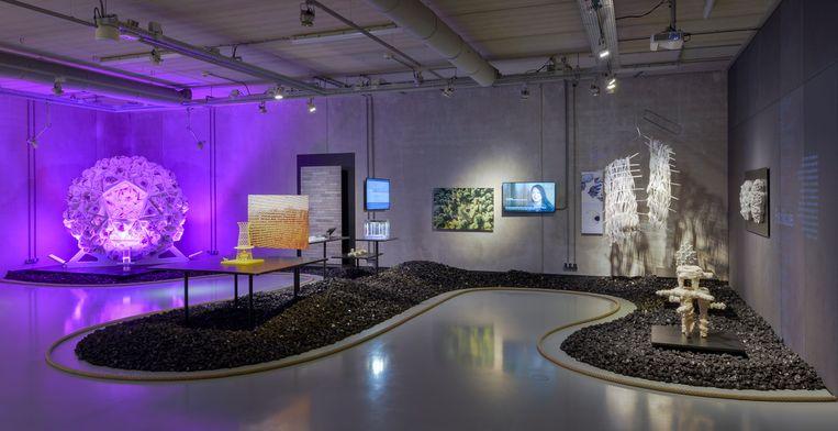 Expositieruimte van Nature in het Cube-museum in Kerkrade. Beeld Cube designmuseum