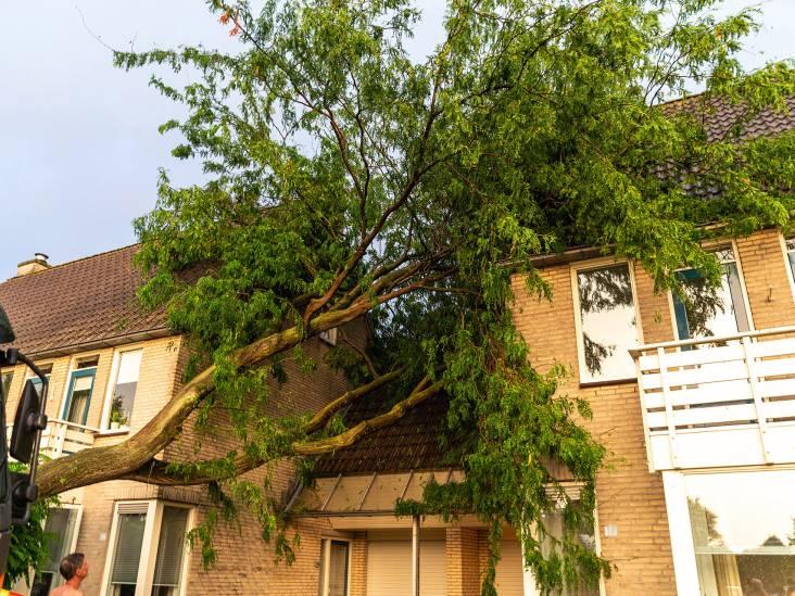 Noodweer slaat toe: wateroverlast, omgewaaide bomen en woningen geraakt door bliksem