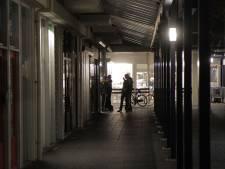 Parkeerplaats winkelcentrum Ussen Oss krijgt nieuwe bestrating: minder water het riool in