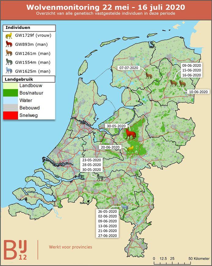 Overzicht van vastgestelde waarnemingen van wolven tussen 22 mei en 16 juli.