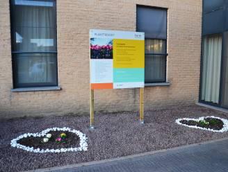 """Ferm Ninove maakt 'troostplek' aan woonzorgcentrum Klateringen: """"Plek om samen troost te vinden en te planten"""""""
