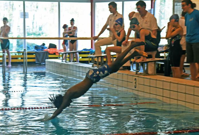 Henry Meijers duikt het water in, tijdens het schoolzwemkampioenschap dat zaterdag in zwembad Reyaertland werd gehouden.