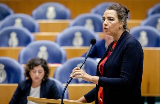 Isabelle Diks (GroenLinks) ontving tot voor kort ruim 7000 euro wachtgeld per jaar, bovenop haar salaris als Kamerlid.