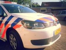 Jongeman plast tegen politieauto in Echteld: nachtje cel en 250 euro boete