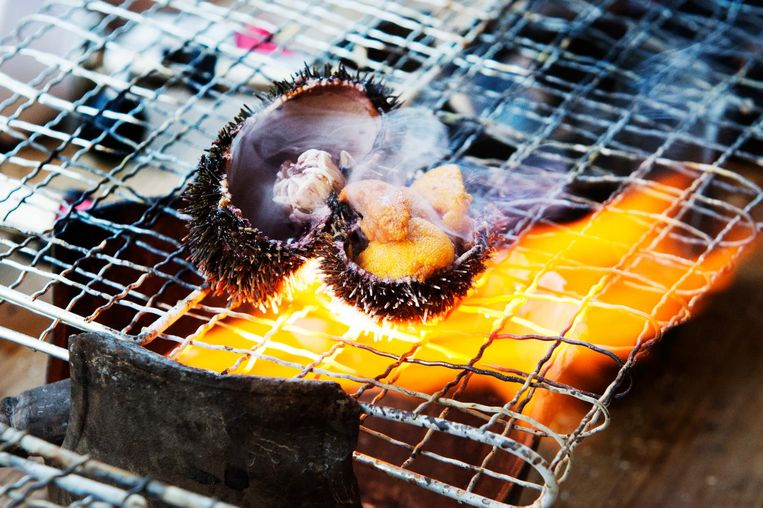 Japanse festivalhap: gegrilde zee-egel. Beeld Sanne de Wilde / de Volkskrant