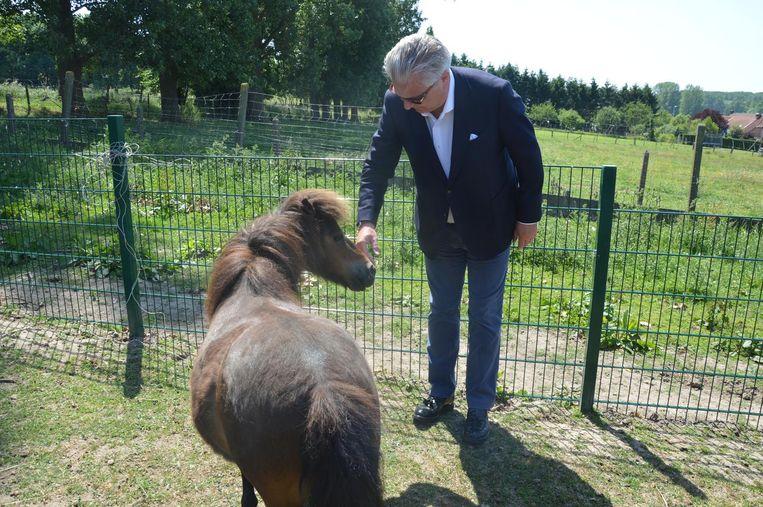 Prins Laurent maakt vrienden in het asiel. Pony Ramses wijkt niet van zijn zijde.