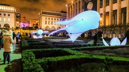 Bright Brussels lokt ondanks storm dubbel zo veel bezoekers