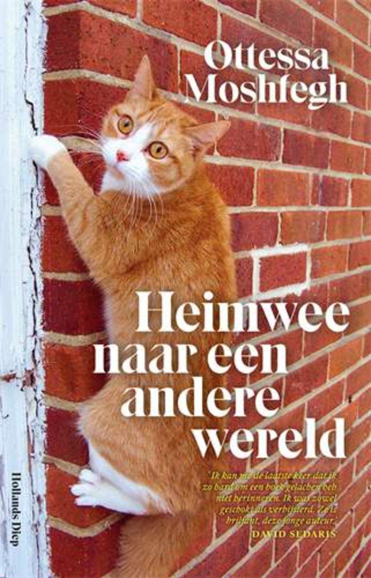 Ottessa Moshfegh: Heimwee naar een andere wereld.  Uit het Engels vertaald door Lidwien Biekmann en Tjadine Stheeman.  Hollands Diep, € 21,99 Beeld