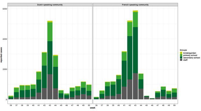 Wekelijks aantal gerapporteerde positieve gevallen, per schoolniveau en per gemeenschap (Vlaams of Frans), week 36-50.