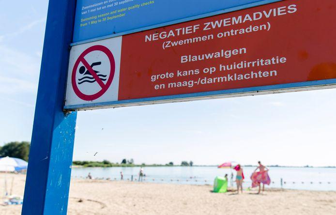 Het waterschap adviseert bij drie plekken in het Brielse Meer niet te gaan zwemmen