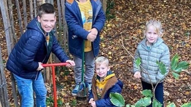 Kinderen planten 1.000 boshyacinten op school