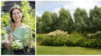 Wil je wél een tuin, maar liever geen zwaar werk of veel onderhoud? Tuinexperte Laurence Machiels toont hoe je dat aanpakt