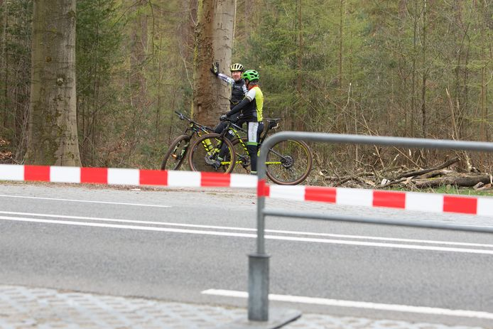 Mountainbiken op de Utrechtse Heuvelrug wordt niet verboden, maar de parkeerterreinen bij de bosgebieden zijn afgesloten.
