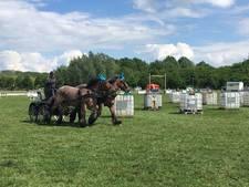 Bodybuilders onder de paarden weer in Duiven