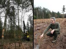 Bomen planten en bomen kappen in hetzelfde bos, het kan in Sint Anthonis