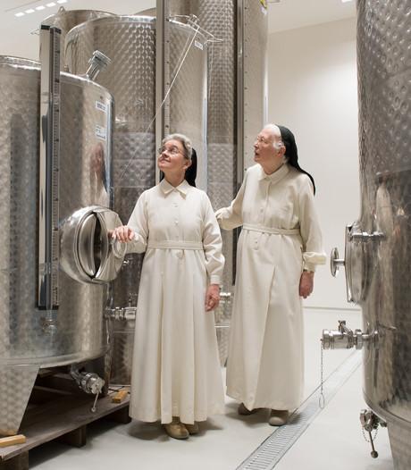 Wijndomein Sint-Catharinadal bijna klaar: nu wachten op de eerste oogst