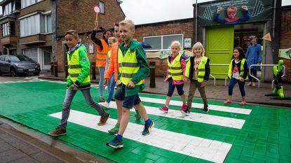 Scholen krijgen groene oversteekplaats