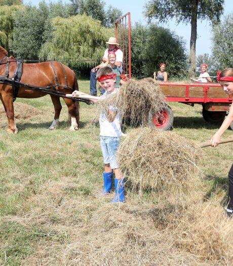 Kids halen hooi binnen om paarden eten te geven. 'Praten met een psycholoog zijn ze beu'