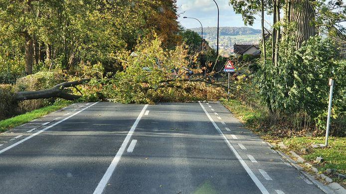De weg is versperd en dat zal volgens de politie nog een paar uur het geval zijn.