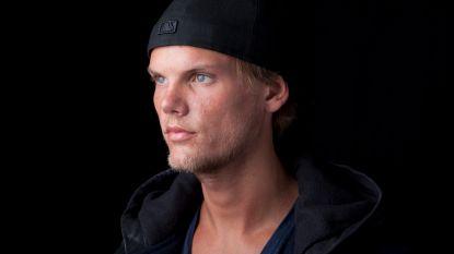 Zweeds koninklijk paard vernoemd naar dj Avicii