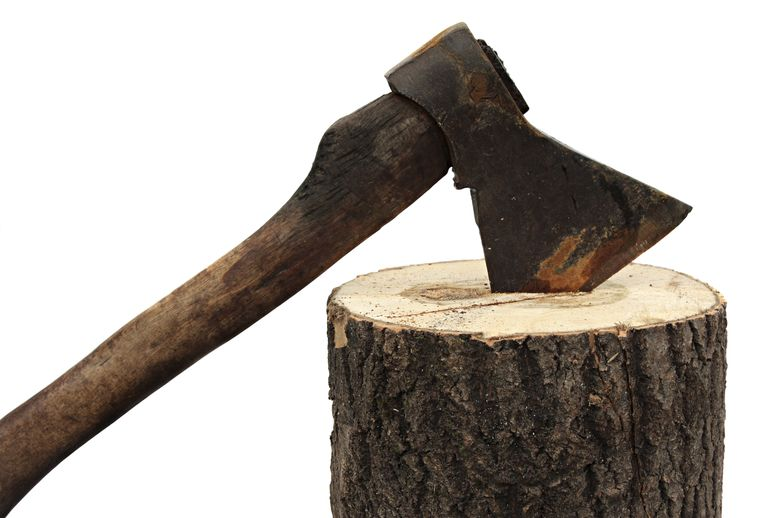 axe and firewood isolated on a white background. bijl hakbijl hout