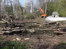 Bomenkap bij stadsverwarming Geertruidenberg stilgelegd