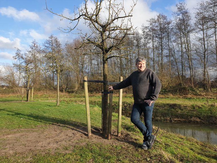 Schepen voor Openbaar Groen Danny Van de Velde (N-VA) aan de verplaatste fruitboom aan De Dwergenbergen.