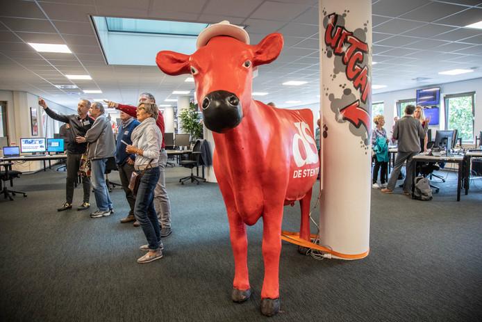 De Stentor-koe is er ook