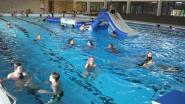 Verbauwenbad wordt duidelijk gesmaakt: nieuw zwembad lokt tot 3 keer meer zwemmers