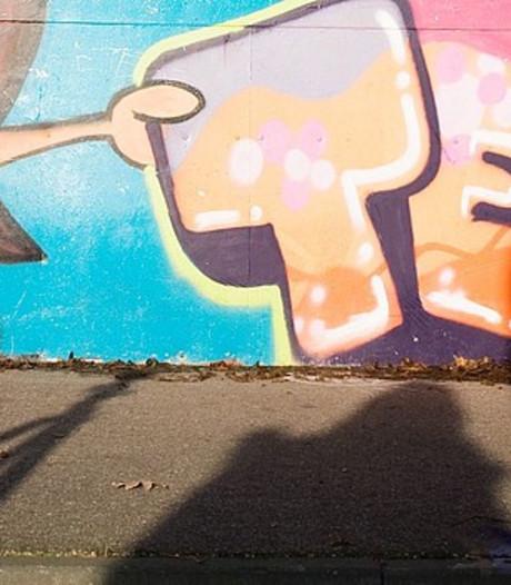 Veenendaal doet aangifte van grafitti op 40 plekken