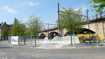 De twee gezichten van Zurenborg: Bomen moeten weg op Tramplein maar mogen blijven op Draakplaats