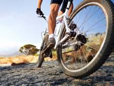 Punaises op bospaden tussen Putte en Ossendrecht, oppassen geblazen voor mountainbikers